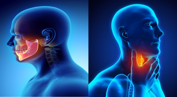 hpv throat cancer blogs