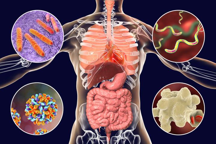 papilloma virus e tumore al cervello