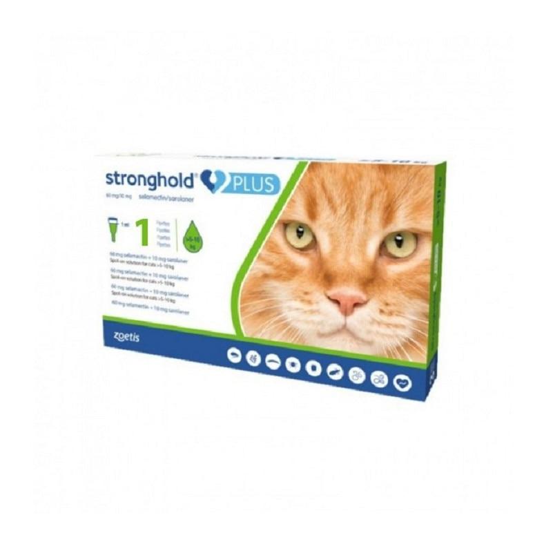 medicamente pentru paraziti intestinali la pisici