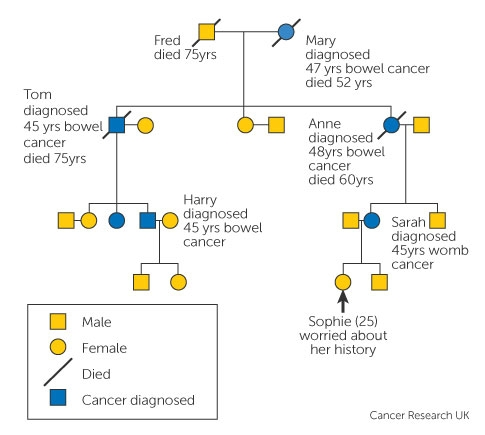 familial cancer definition biology)