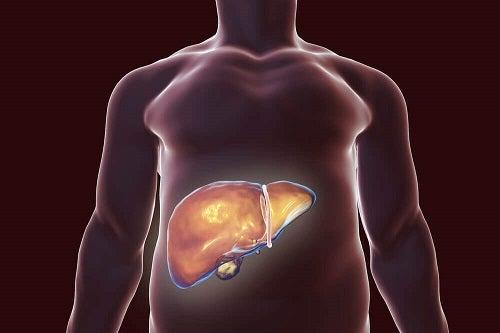 Detoxifierea ficatului - cea mai bună și sigură metodă - triplus.ro