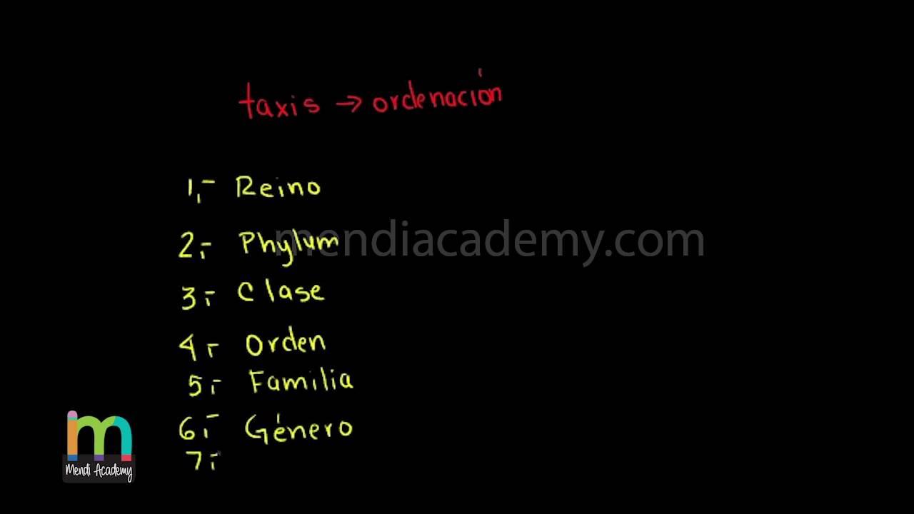 taxonomie viermi)