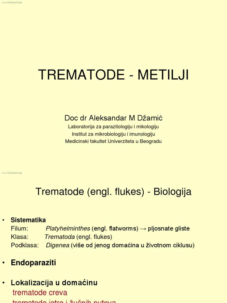 reguli de tratament pentru helminți)