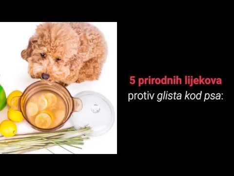 parazit profilactic)