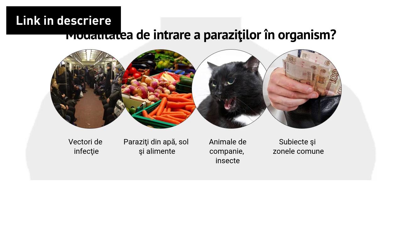 Curățarea sucurilor de paraziți - printreoale.ro