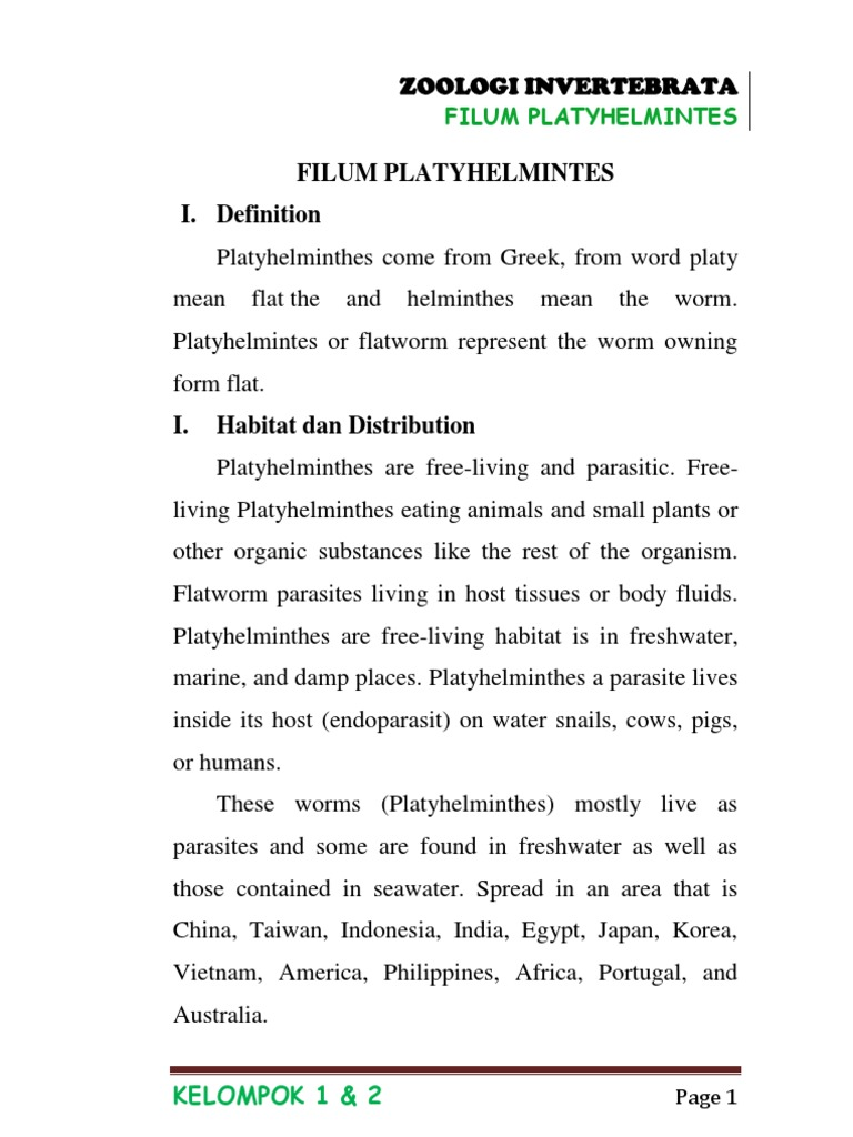 Filum platyhelminthes doc - triplus.ro
