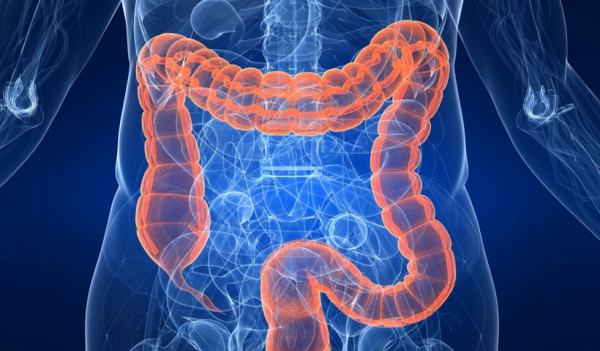 colon intestinal curăță detox