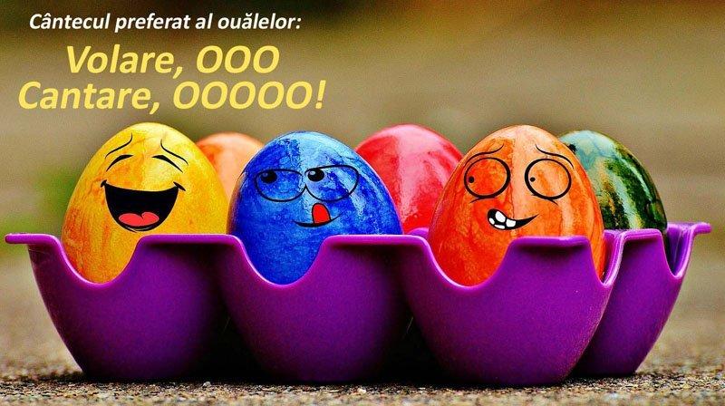ouă de taburet ouă)