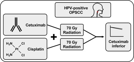 Hpv oropharyngeal cancer ppt - triplus.ro
