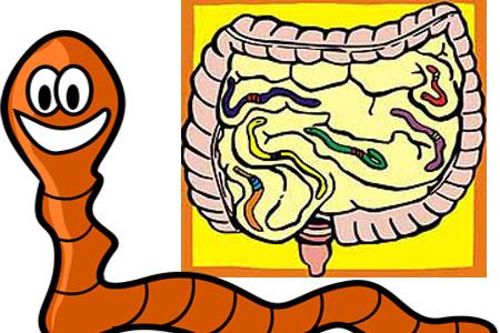 enterobioza este o etapă invazivă la om)