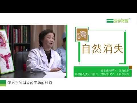 ano ang human papilloma virus