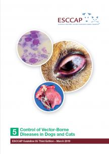 Infecţia cu Giardia (giardiaza) - triplus.ro