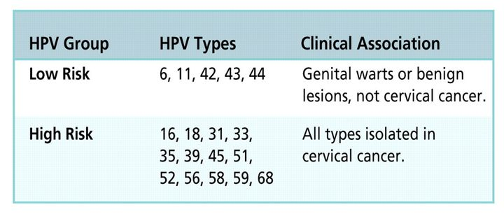 hpv high risk type 18)