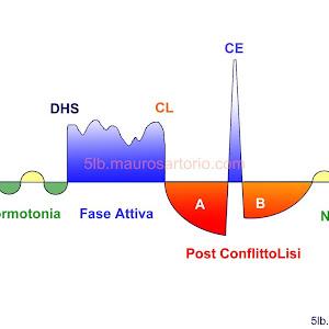 dermatite 5 leggi biologiche)