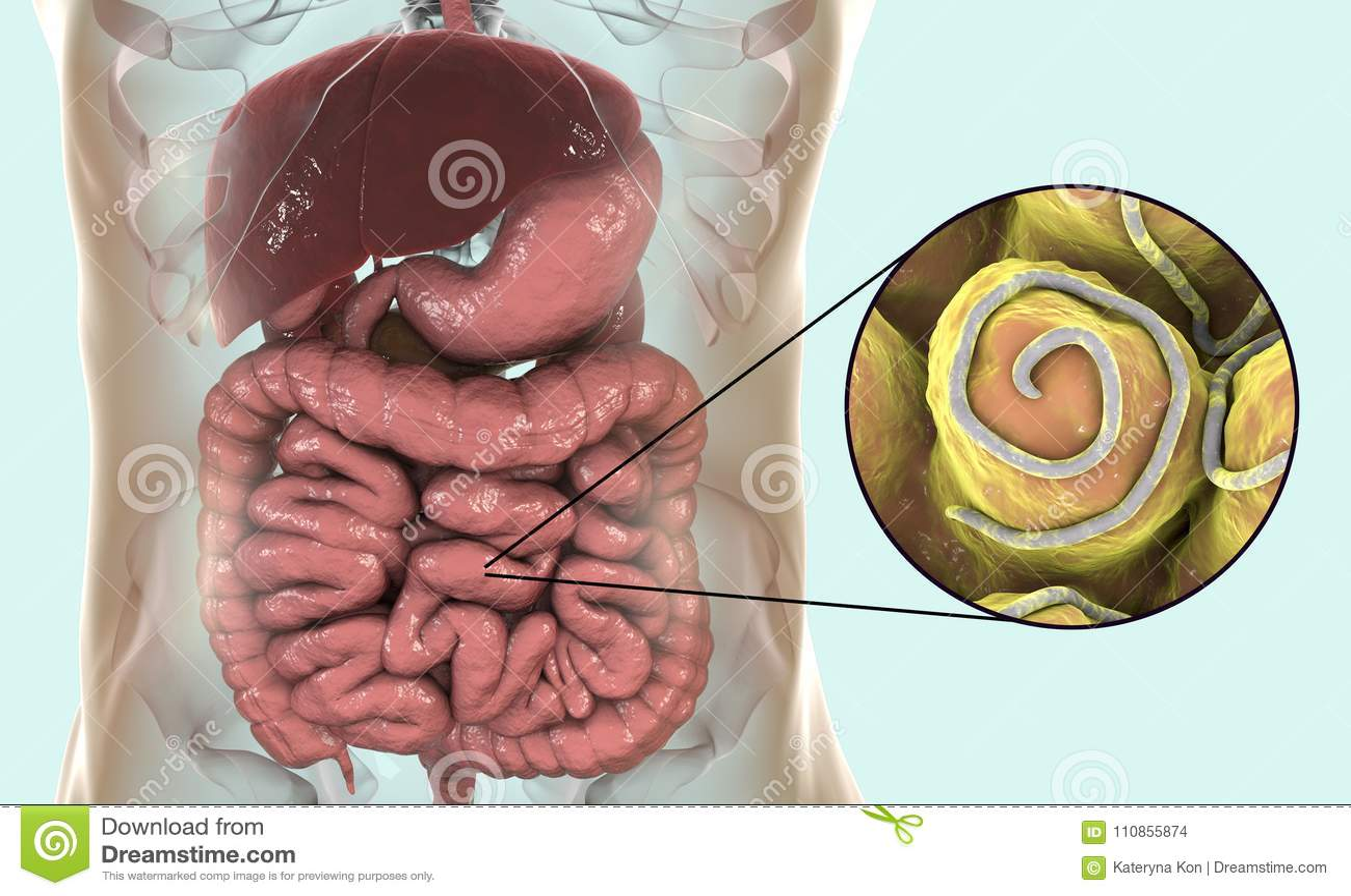 papilomavirusuri umane