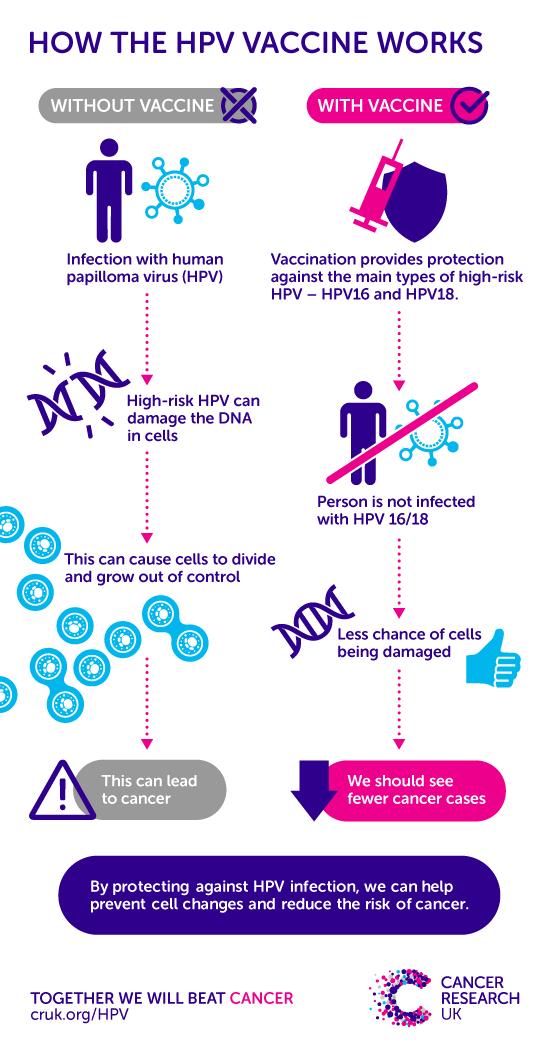 high risk hpv cancer risk