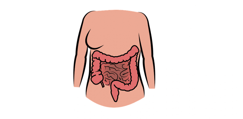 terapie cu helmint în boala crohn)