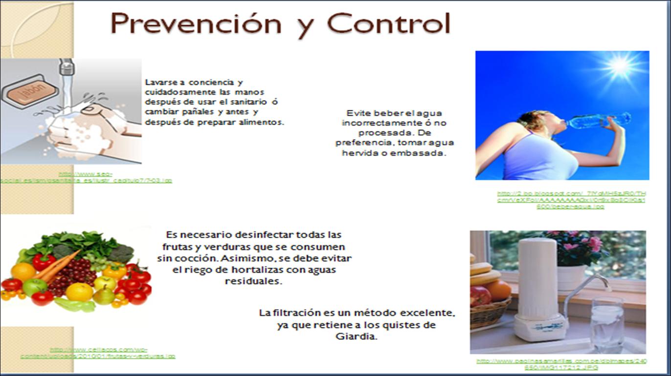 oxiuros prevencion y tratamiento)