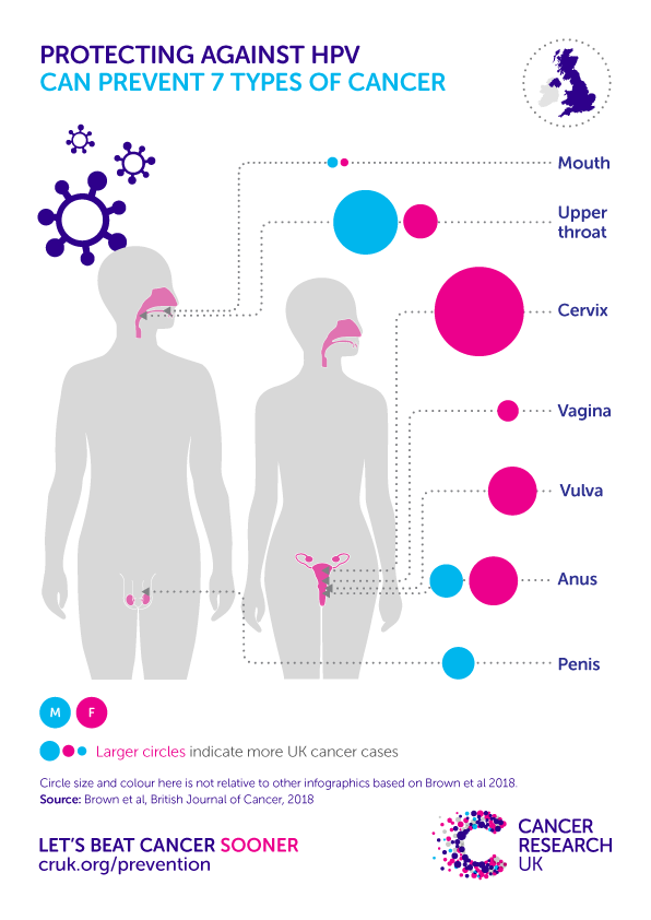 does hpv vaccine prevent cancer in males