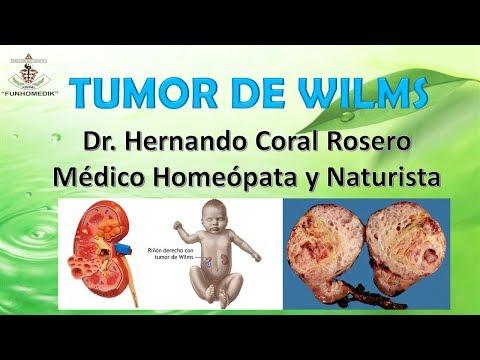 Hpv vaksine gravid - triplus.ro - Hpv virus gravid