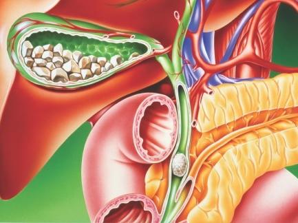 dezintoxicarea super colon se curăță hpv impfung pro kontra