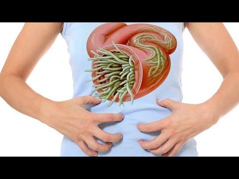 Wakfu saison toxine, Cele mai eficiente tablete parazite