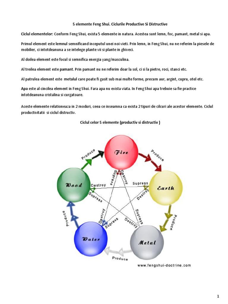 diagrama ciclului de viață larg a panglicii
