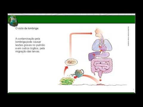 filo nemathelminthes resumo detoxifierea otetului de mere