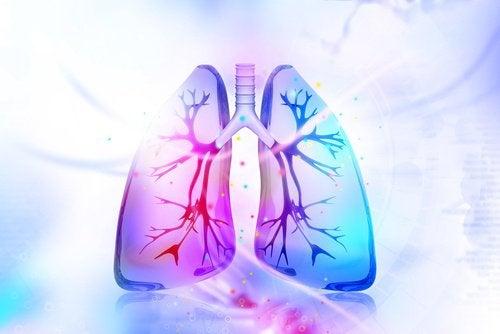 detoxifierea nicotinei)