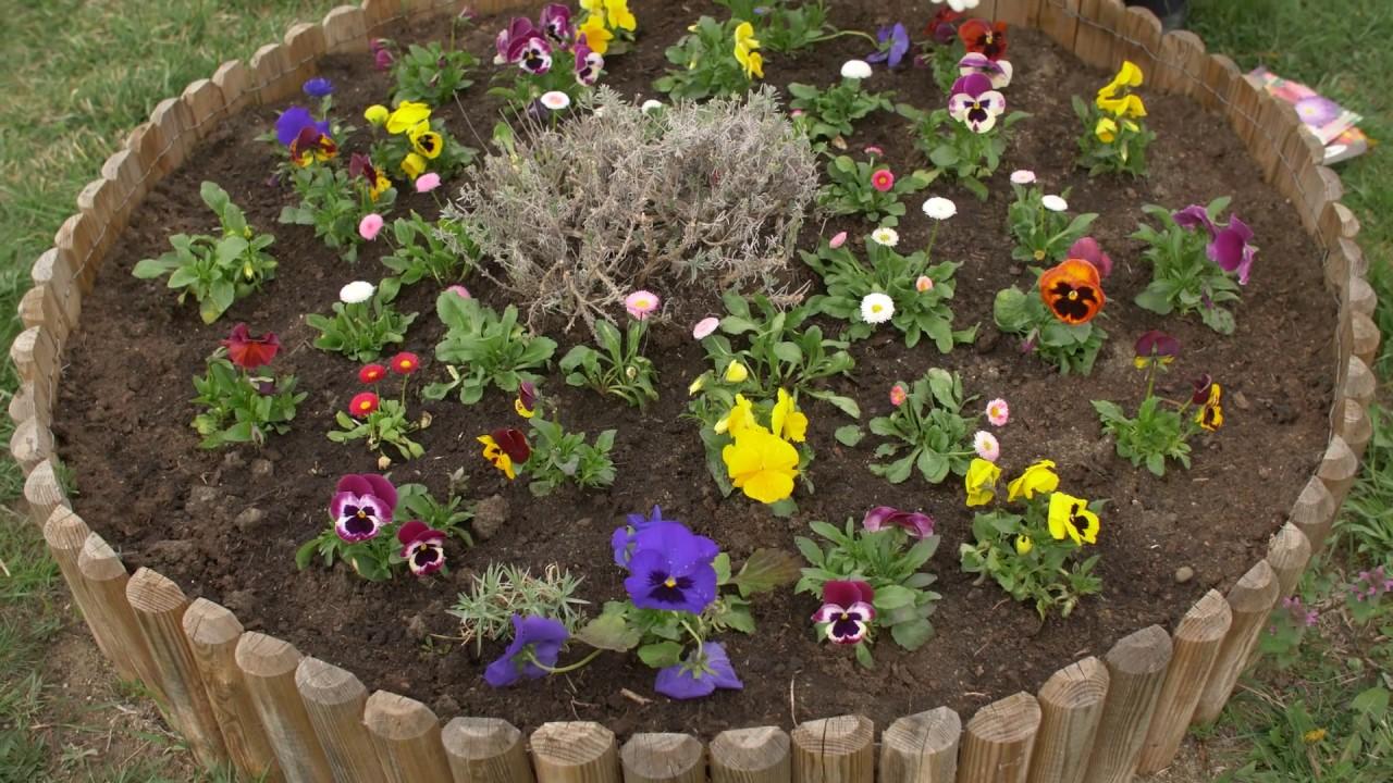 grădină de flori de tenă