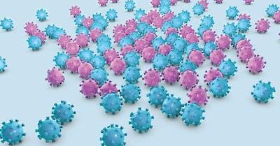 modalita di trasmissione del papilloma virus