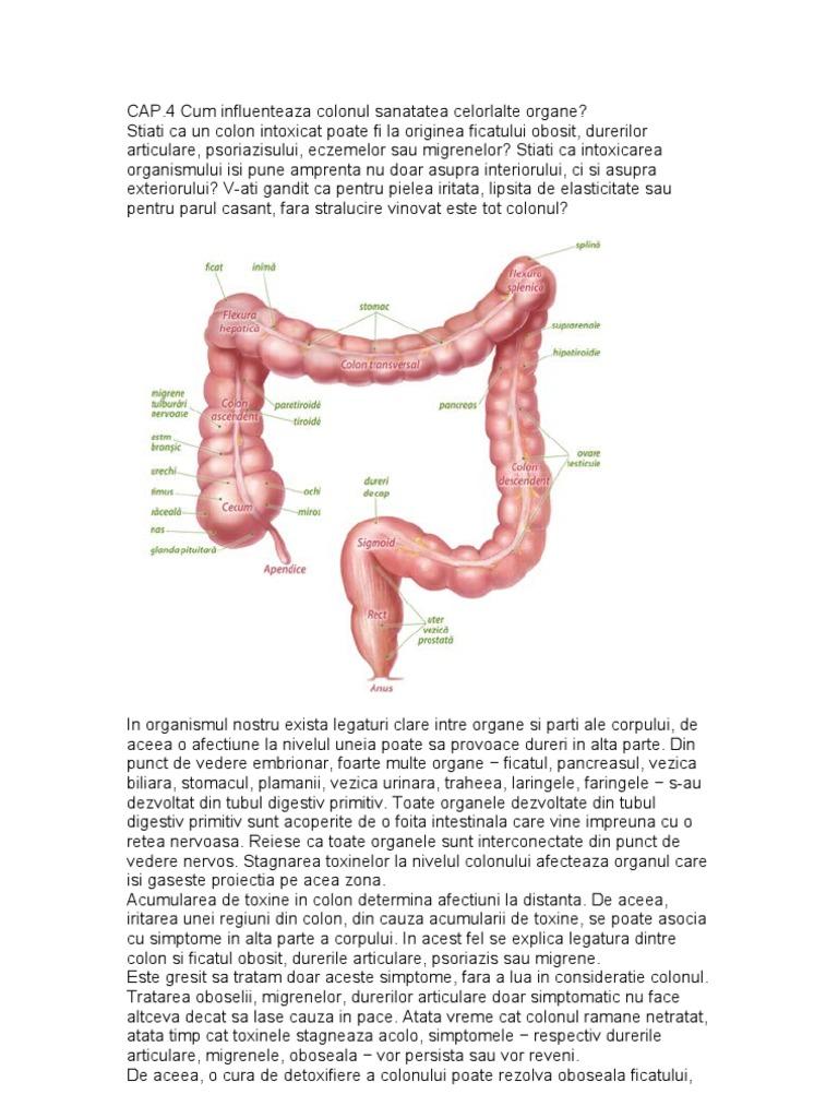 Dezintoxicare colon colonică 30 zile)