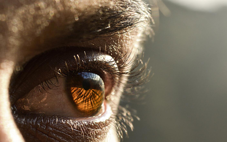 Ce viermi pot fi în ochii lui