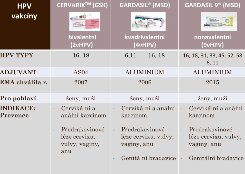 Hpv femme vaccin - Hpv virus u muzu lecba