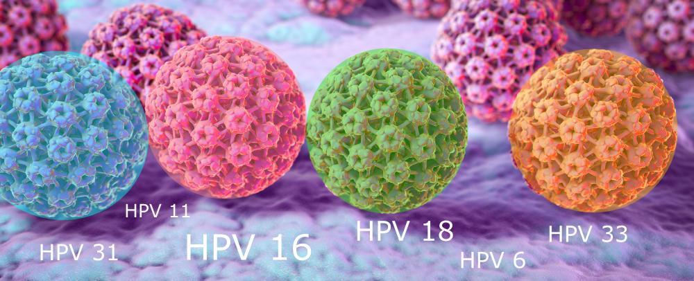 hpv papillomavirus sta je