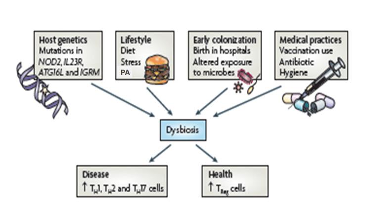 dysbiosis o que e)