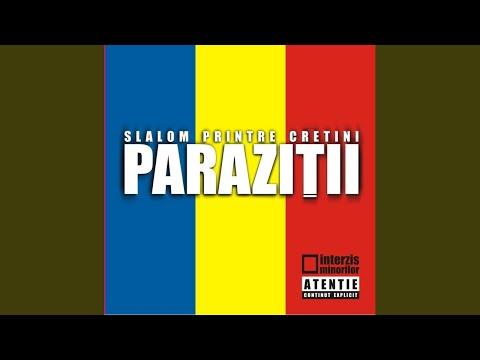 parazitii colaj 2020)