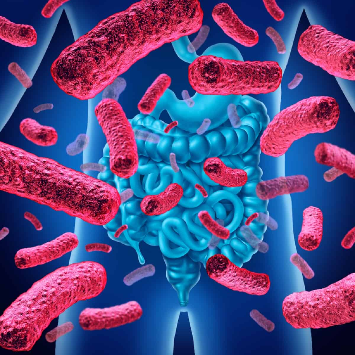 Gastric cancer kills, Daily coronavirus briefing