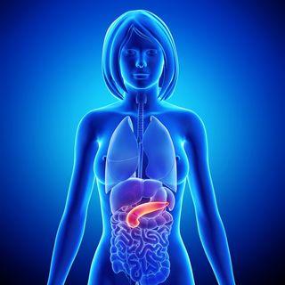 detoxifierea pancreasului papiloamele sunt paraziți