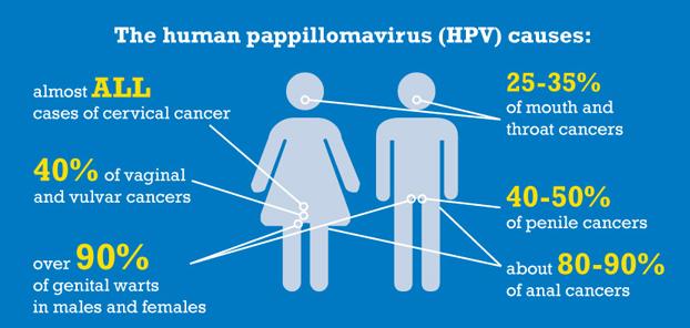humaan papillomavirus mannen