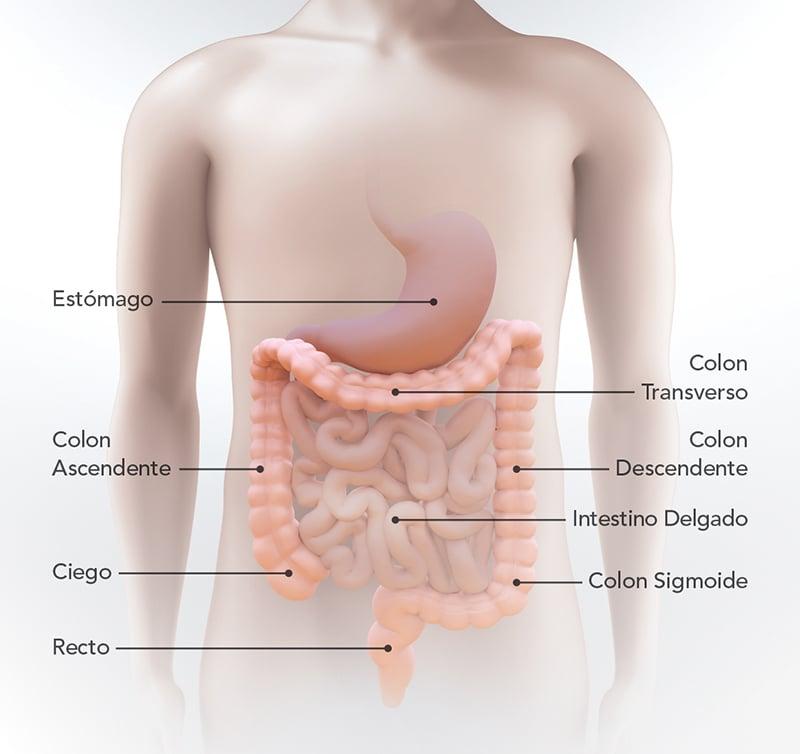 que es cancer abdominal