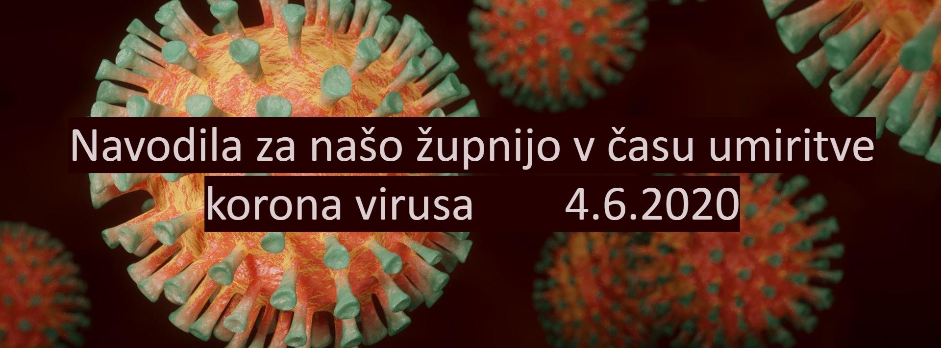 virusi 7 razred)