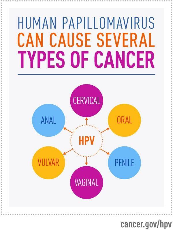 how is human papillomavirus hpv transmitted utilizat pentru tratamentul verucilor genitale