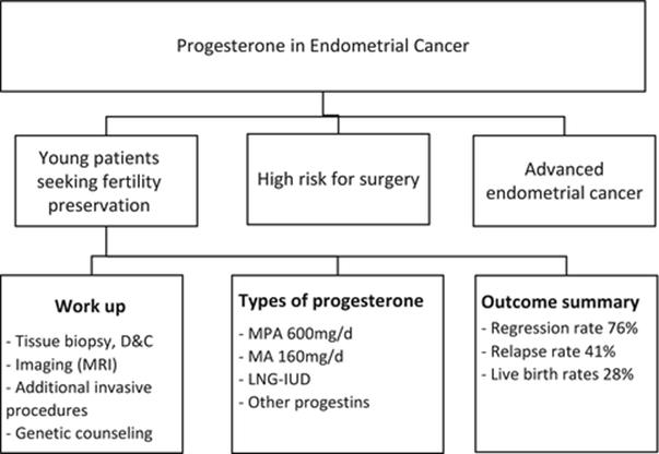 endometrial cancer fertility preservation)