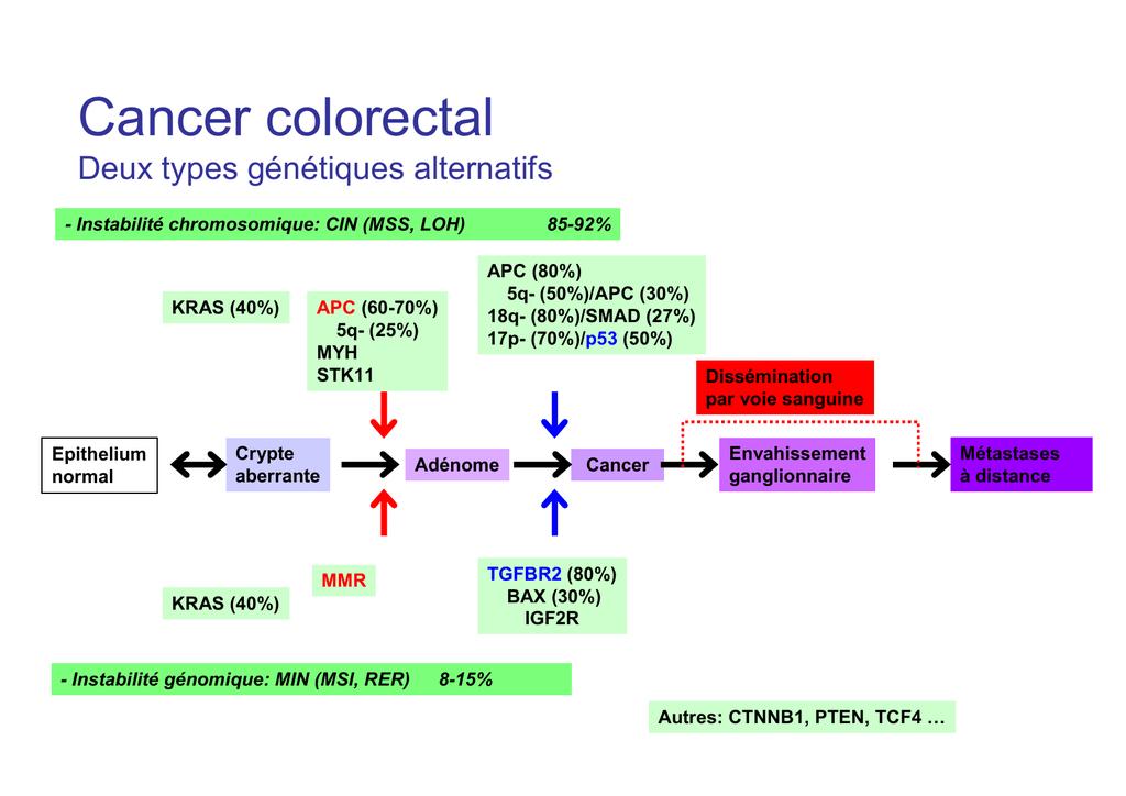 Cancer colon genetique. Încărcat de