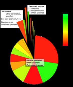 ce explorează enterobioza