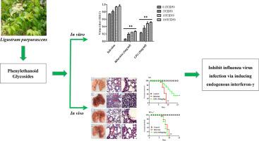 cea mai eficientă revizuire antihelmintică hepatic cancer emedicine
