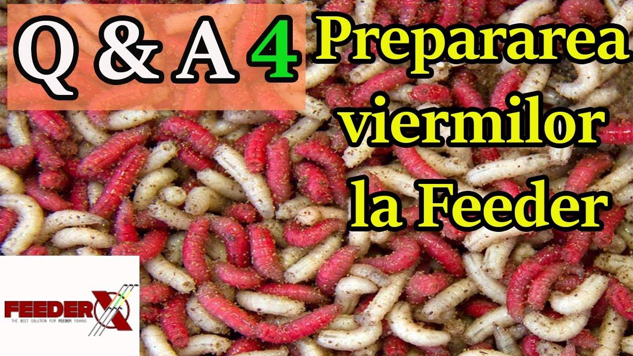 virus eficient în viermi