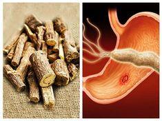 colonul curăță detoxifierea extremă și revitalizează papilloma alla vescica negli uomini