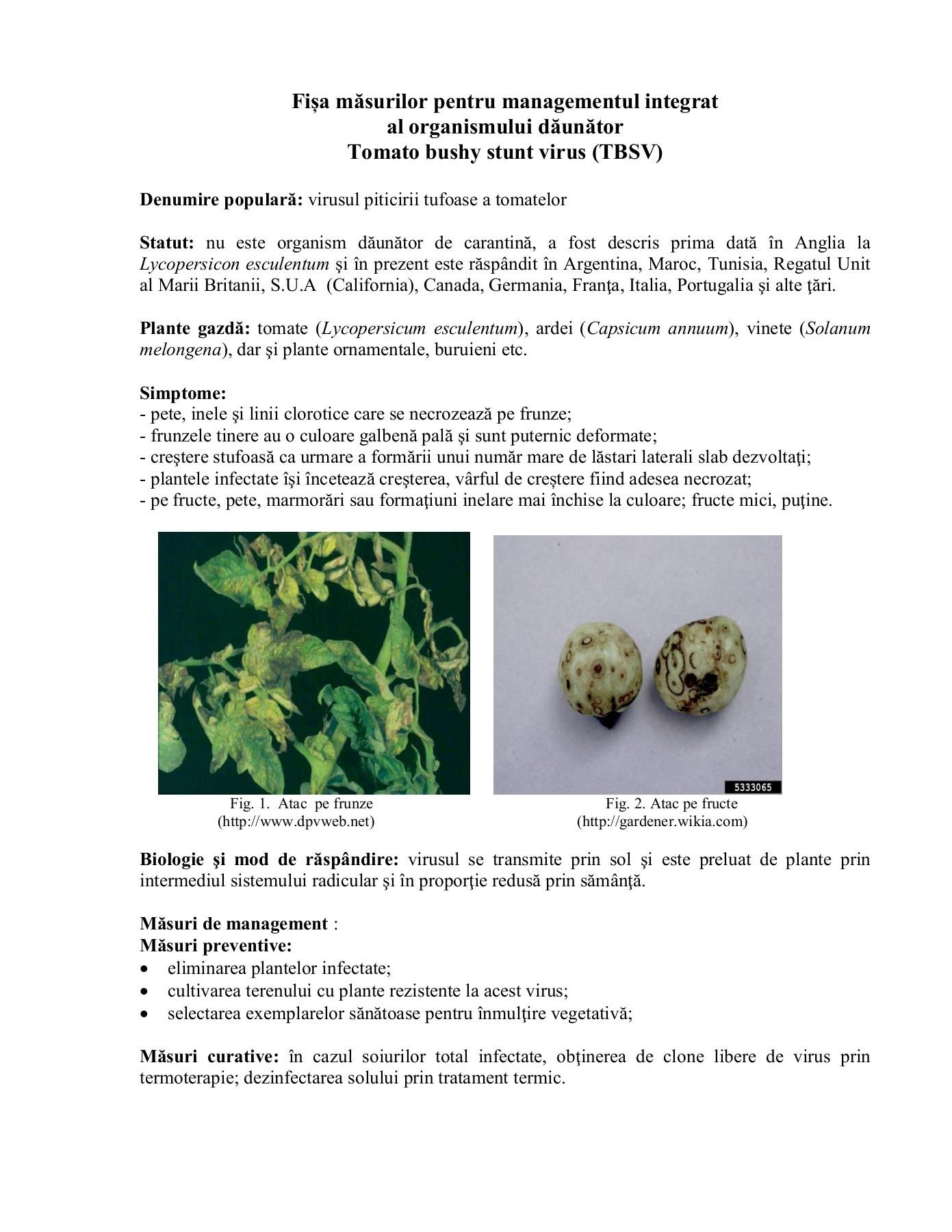 vaccin papillomavirus gardasil ou cervarix